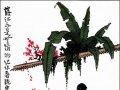 [点歌专题回放] 芒种时节祭花行