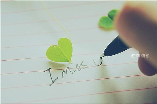20120730184941_hsvfy.thumb.600_0.jpeg