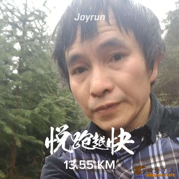 13.55公里山路边的森林
