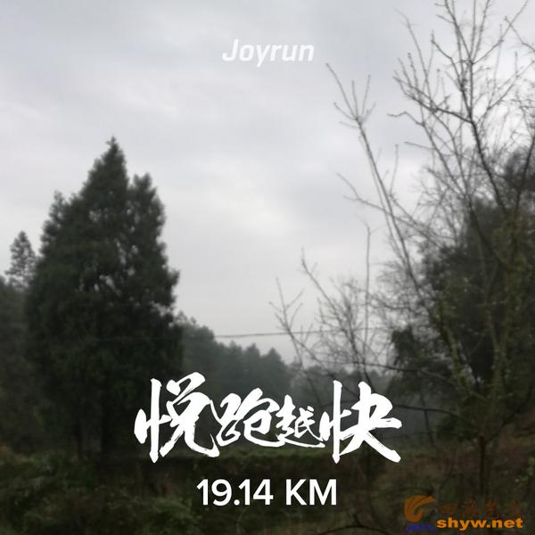 19.14公里处早晨山林中的景色