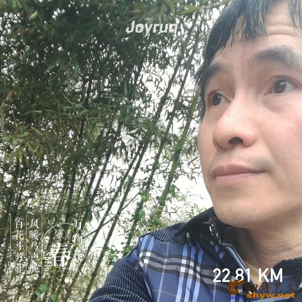 22.81公里处是一遍竹林