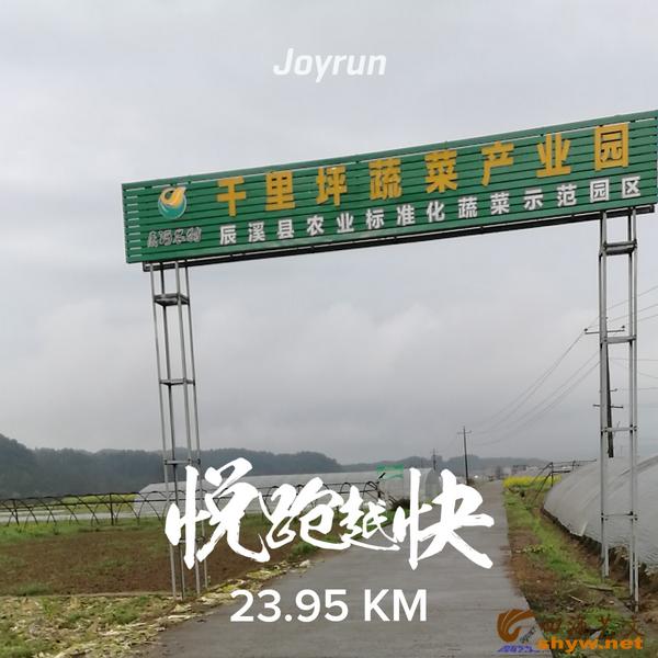 23.95公里处,经过千里坪蔬菜产业园,这里是辰溪县农业标准化蔬菜示范区