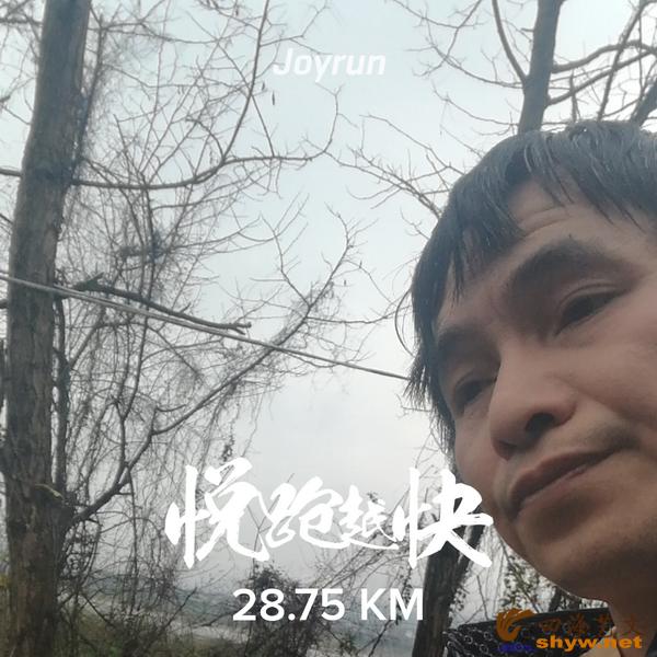 28.75公里处到了李家溪,江边树落尽了叶子