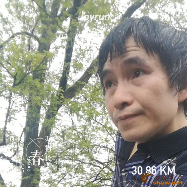 30.86公里处当江洲上游边,树木青绿,空气清醒。