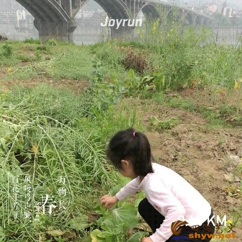 joyrun_pic_1491619150.jpg