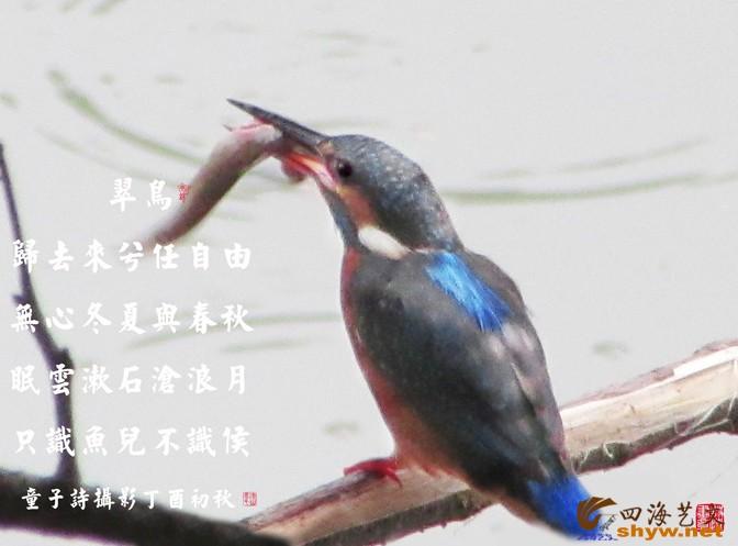 IMG_6297-5.jpg