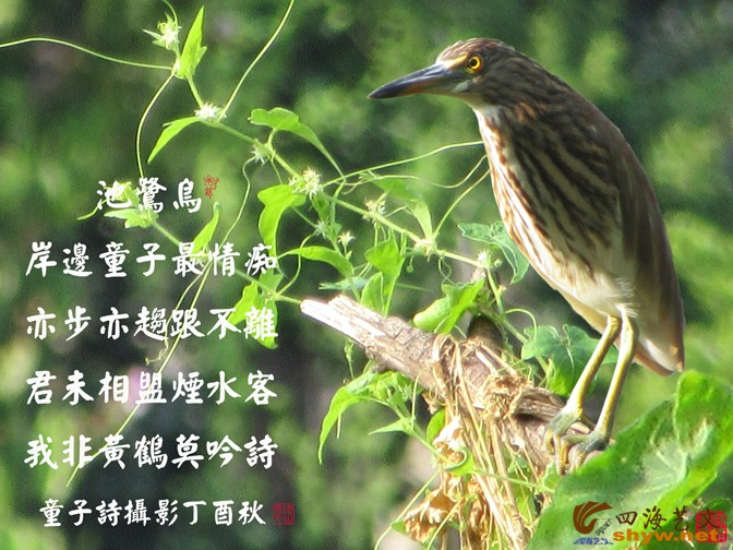 IMG_2221-5.jpg